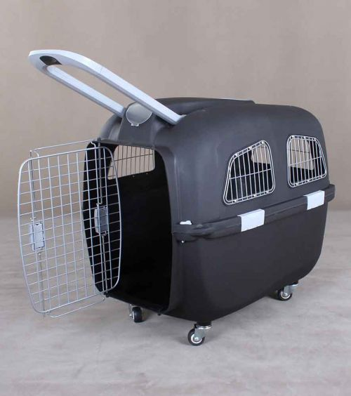 Pet Carrier with Handle 6093