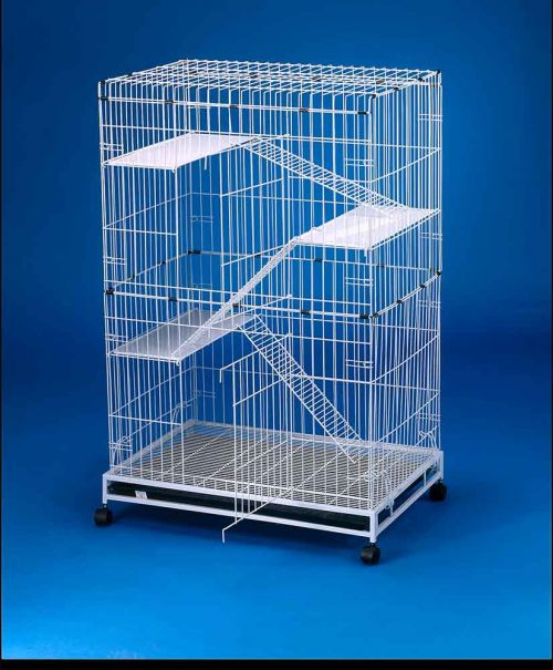 Collapsible Steel Cat Cage 6231 Petsplace