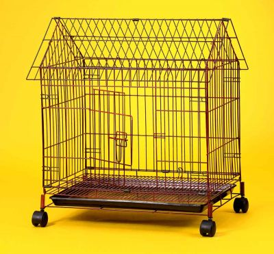 Collapsible Steel Pet Dog Cage 6424