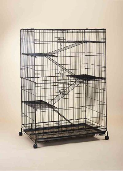 Steel Cat Cage C377RI