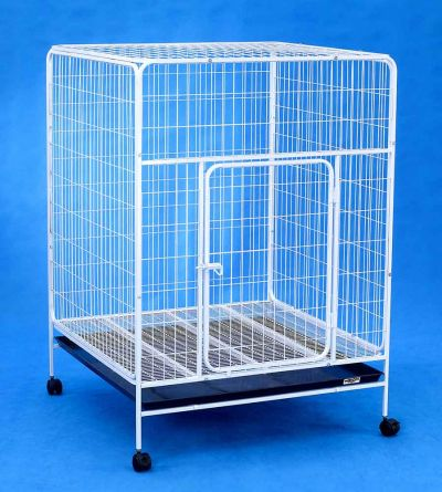 Steel Dog Pet Cage D334 White